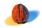 Walnuts are one of the surprising foods for anti aging.